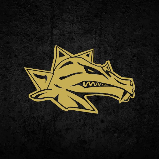 Dragons 500x500 1